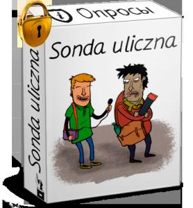 Курс по уличным опросам — Sonda uliczna