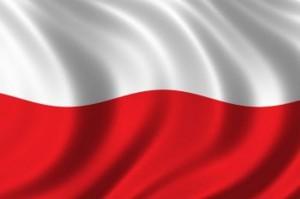 Польский переводчик